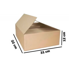 Kit 500 Unidades Caixa de Papelão 31x22x12 - Custo 0,99 /UN